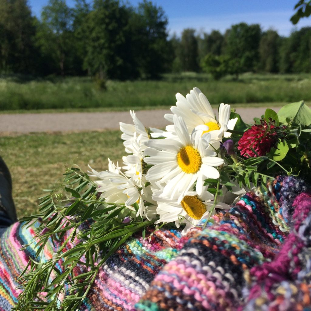 Knitting in the wild